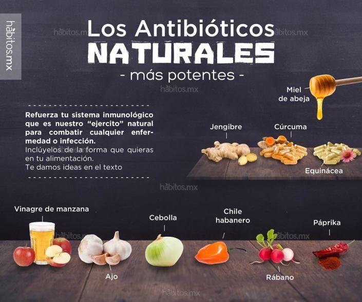 10 POTENTES ANTIBIÓTICOS NATURALES