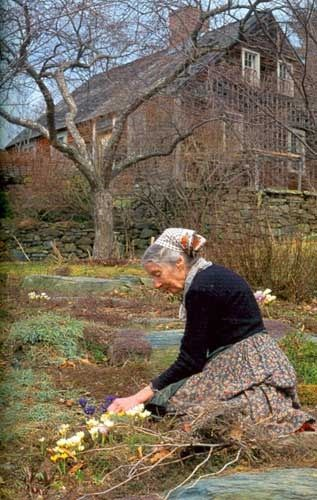 Good morning friends. I have been thinking a lot about Tasha Tudor lately. I think that it's because it's been so dark and dreary and cold...