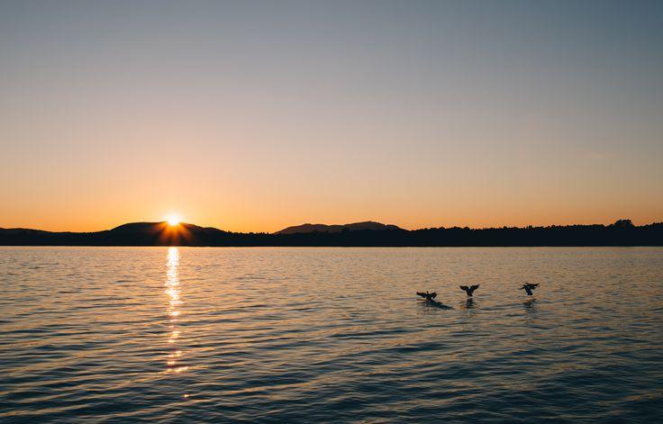 le lac-Brome