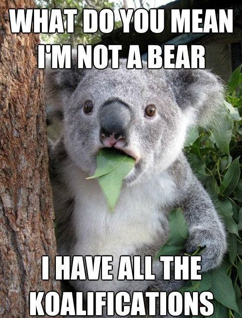 What Do You Mean I'm Not A Bear,  Click the link to view today's funniest pictures!