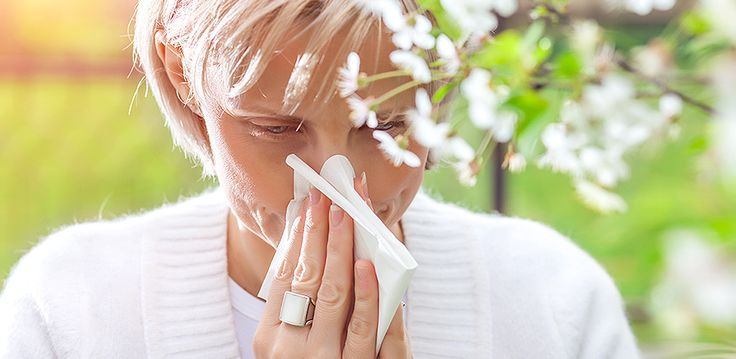 Natural Remedies for Hay Fever - HealthyLife  Discover natural ways to treat hay fever symptoms this season.   #hayfever #natural
