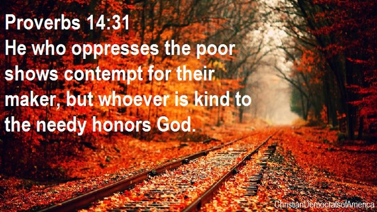 Jesus Bible Quotes Wallpaper Proverbs 14 31 He Who Oppresses The Poor Shows Contempt