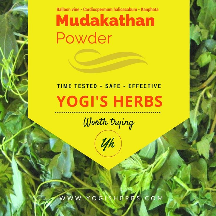 Nature has given us with many wonderful medicinal herbs which have amazing healing properties and Mudakathan is one of them.      Mudakathan is the best natural remedy for Rheumatoid arthritis and Nervous breakdown.  Mudakathan is considered as a very safe herb that can be used even for treating children's cough & cold.  Mudakathan can also be used to treat ear pain, menstrual cramps, general tiredness and sluggishness.  Mudakathan has anti-inflammatory properties and is a rich source of…