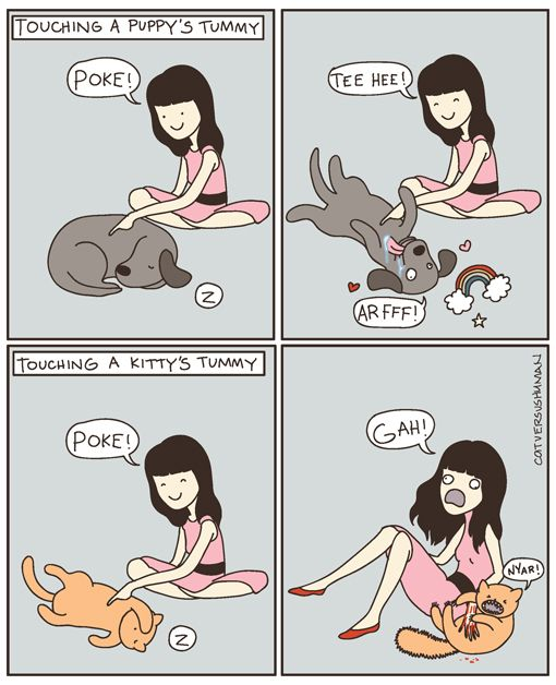 i would like a sleeping puppy to cuddle with...
