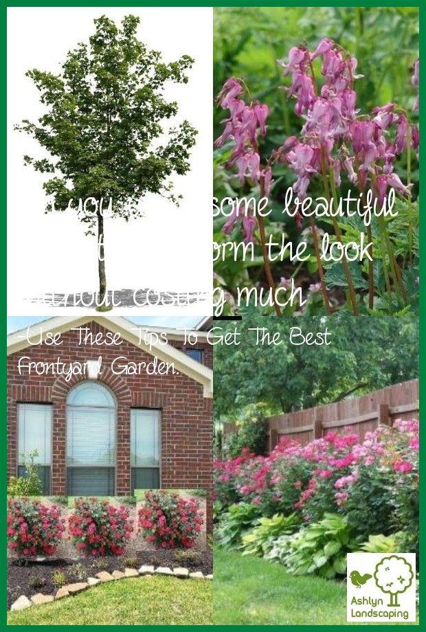 Study Landscape Design And Garden Design Courses Unitec