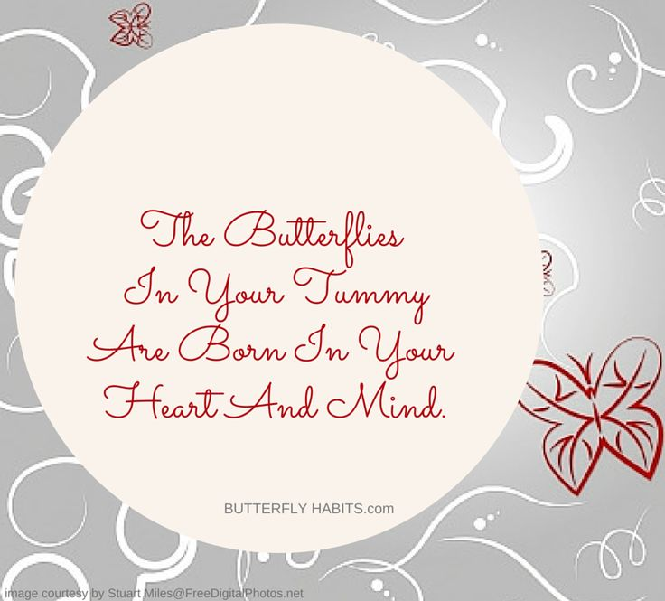 Did you know that the butterflies in your tummy are also created by your mind? Connect to your inner power ... get the free Chapter of BUTTERFLY HABITS: HOW TO MAKE YOUR HONEYMOON LAST FOREVER at http://butterflyhabits.com -    #love #butterflyhabits #relationshipGoals