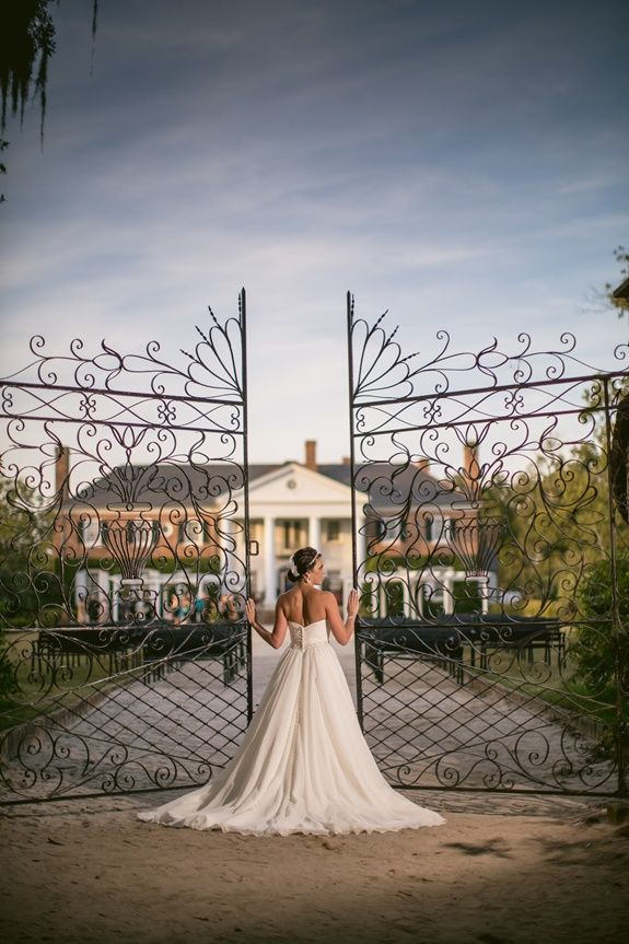 Charlesto wedding at Boone Hall Plantation via Richard Bell Photography