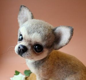 Truly awesome needlefelted Chihuahua puppy