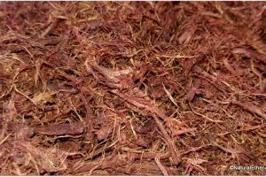 how to make stain with mimosa hostilis root bark