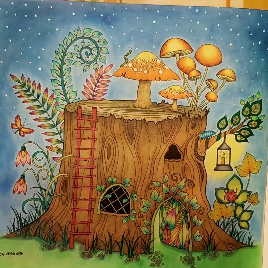 571 Best Enchanted Forest