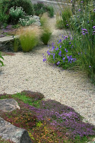534 best ground covers and pathways for my garden images on pinterest