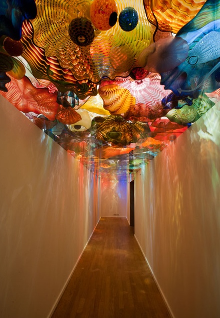 Wow. Dale Chihuly Glass -- Oklahoma City Museum of Art -- Courtesy: Joseph Mills Photography