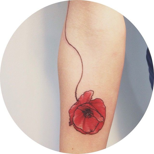 2.COQUELICOT by Dwam