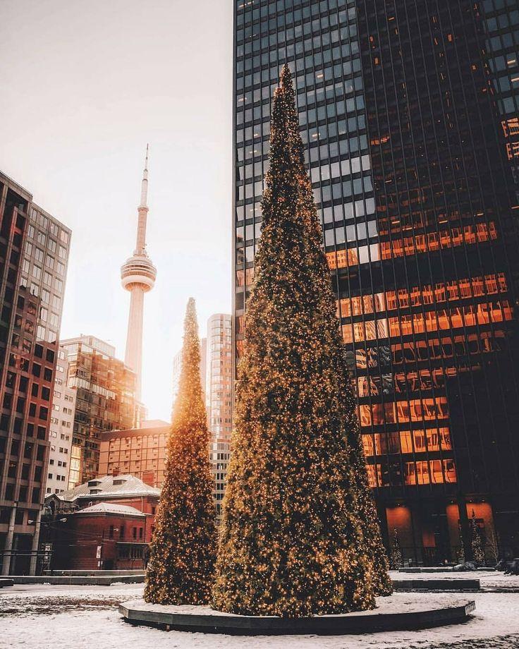 "(@streetsoftoronto) on Instagram: ""Merry Christmas #Toronto  @arjsun #streetsoftoronto"""