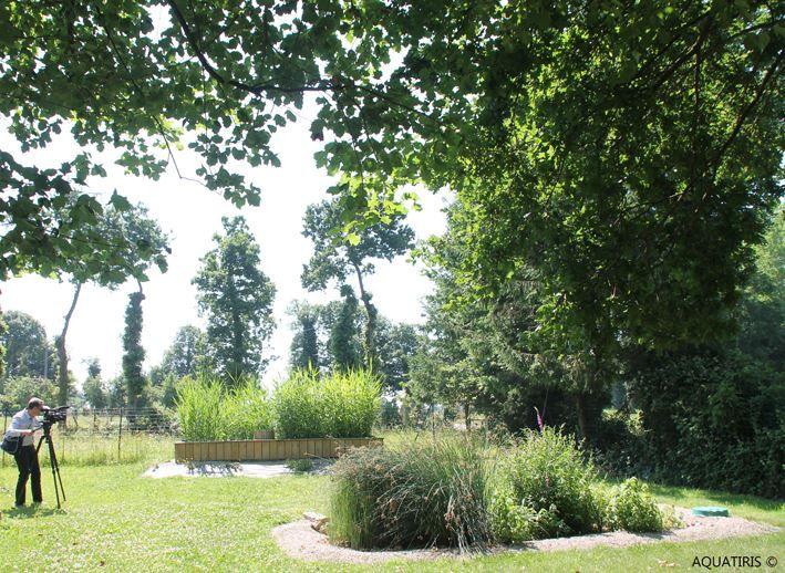 8 best JARDINS Du0027ASSAINISSEMENT images on Pinterest Gardens - assainissement d une maison