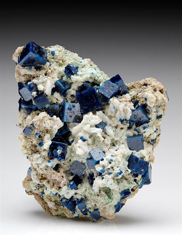 Classic deep blue cubic crystals of Boleite from the Amelia Mine, Baja California, Mexico.
