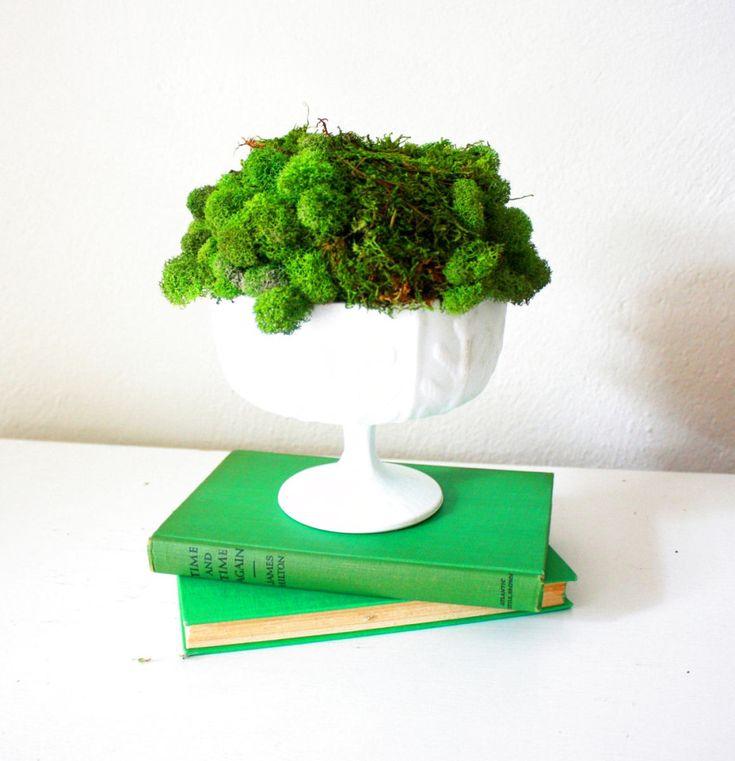 Декор в цветах: зеленый, светло-серый, темно-зеленый, салатовый. Декор в стиле экологический стиль.