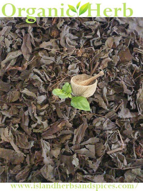 Black mountain herb part 3 final essay