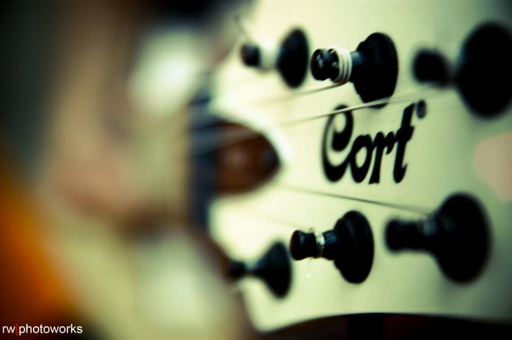 Just cort
