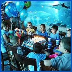 Denver Downtown Aquarium Birthday