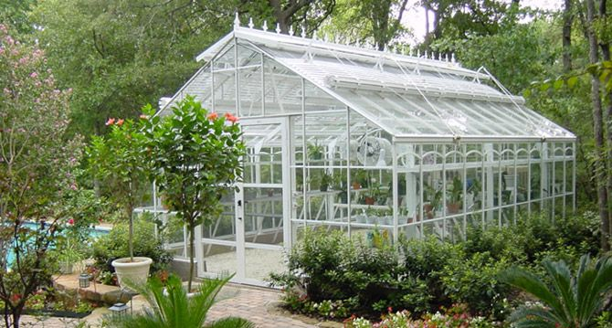 The Texas Greenhouse Company What I Could Do With One Of