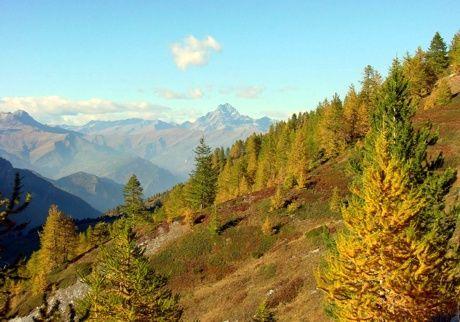 Walloon Marmora #mountains  #piemonte #italy  #provinciadicuneo