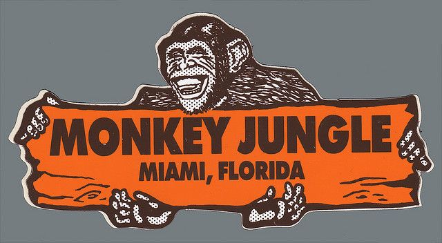 Monkey jungle miami florida sticker create your own custom bumper stickers at bottleyourbrand com