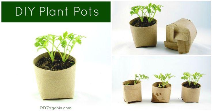 Diy Biodegradable Planting Pots Garden Ideas Pinterest 400 x 300