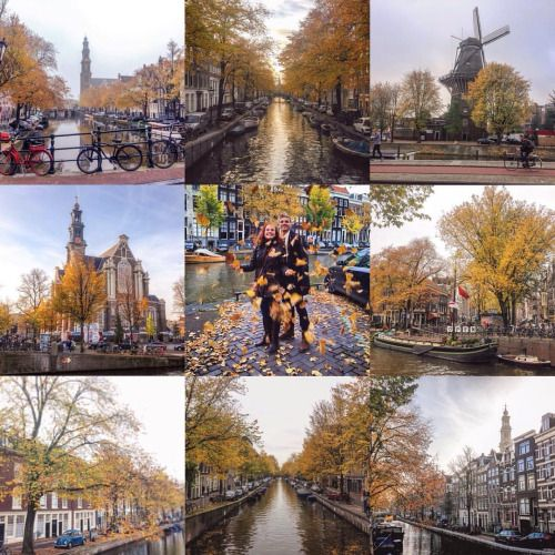Autumn in Amsterdam #9ofpride     #Instamooiness #Mooiness (at...   #Mooiness #Tumblr