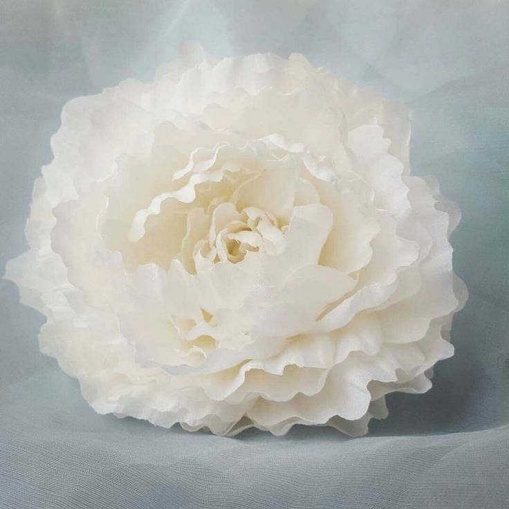 White Silk Peony www.etsy.com/shop/camelliasilkflowers