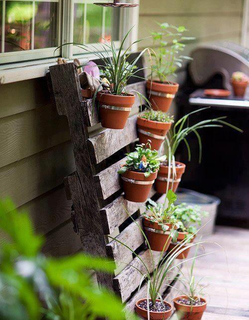 jardin vertical en palette de bois avec de pots de fleurs