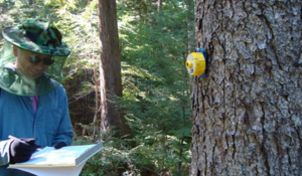 National Tree Benefit Calculator is a citizen science project to
