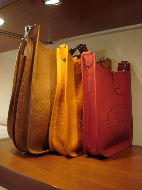 Evelyne Size Comparison: TGM, GM and PM | Bags I love | Pinterest ...