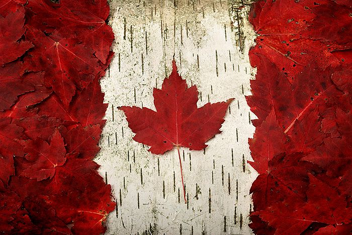 My husband is from Canada!  Canadian flag in maple leaves.