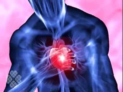 Insuficiência Cardíaca Congestiva. A insuficiência cardíaca, também chamada de insuficiência cardíaca congestiva, é uma doença na qual o coração não consegue mais bombear sangue suficiente para o resto do corpo, não conseguindo suprir as suas necessidades. via @minenfermagem