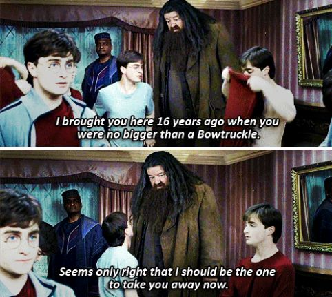 Harry Potter/Fantastic Beasts reference