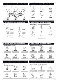 3 séries d'exercices pour travailler le nom (nature, genre et nombre) avec des élèves de CE1 ou de CE2.