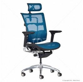 Multi-Adjustable - Posture Management <b>Office Chair</b> - Blue Milan ...