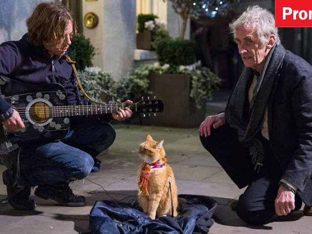 How Long Is Street Cat Named Bob Film