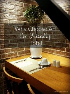 Eco hotels are on the rise, they help protect the environment and offer state-of-the-art comfort and hi-tech features. So, why choose an Eco-Friendly Hotel?