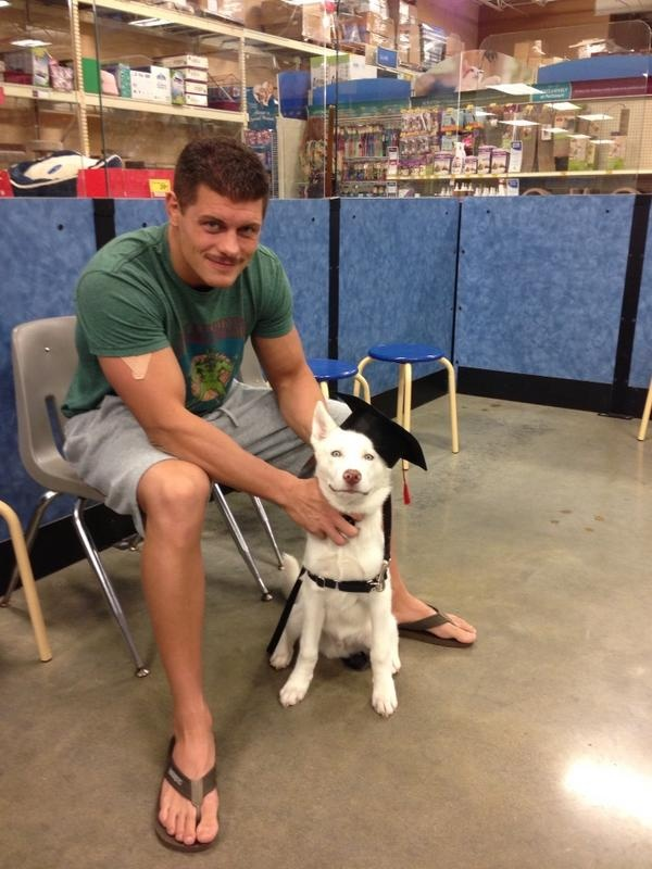 Cody Rhodes, from his Twitter Ha he trained his dog at Petsmart. Epic