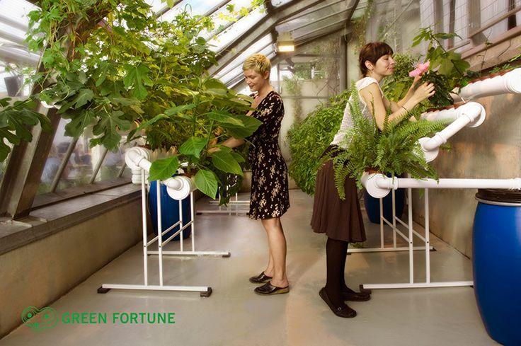Der Vertikale Garten Live Screen Danielle Trofe | queenlord ...