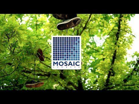 "MOSAIC, ""CURB DOGS"" CONTEST, SAN SEBASTIAN 2017 – Mosaic Company: Source: Mosaic Company"