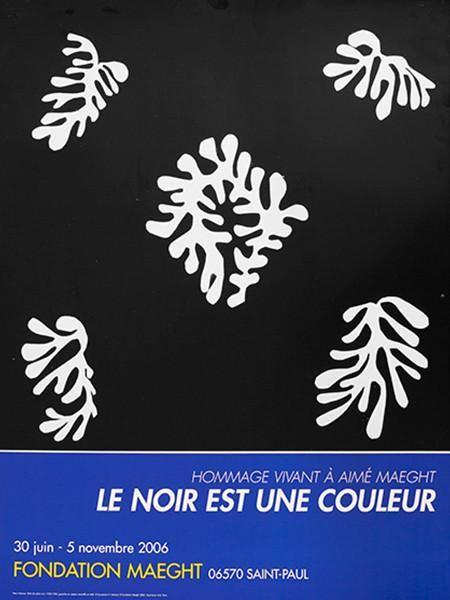 Matisse - Voile De Calice Noir