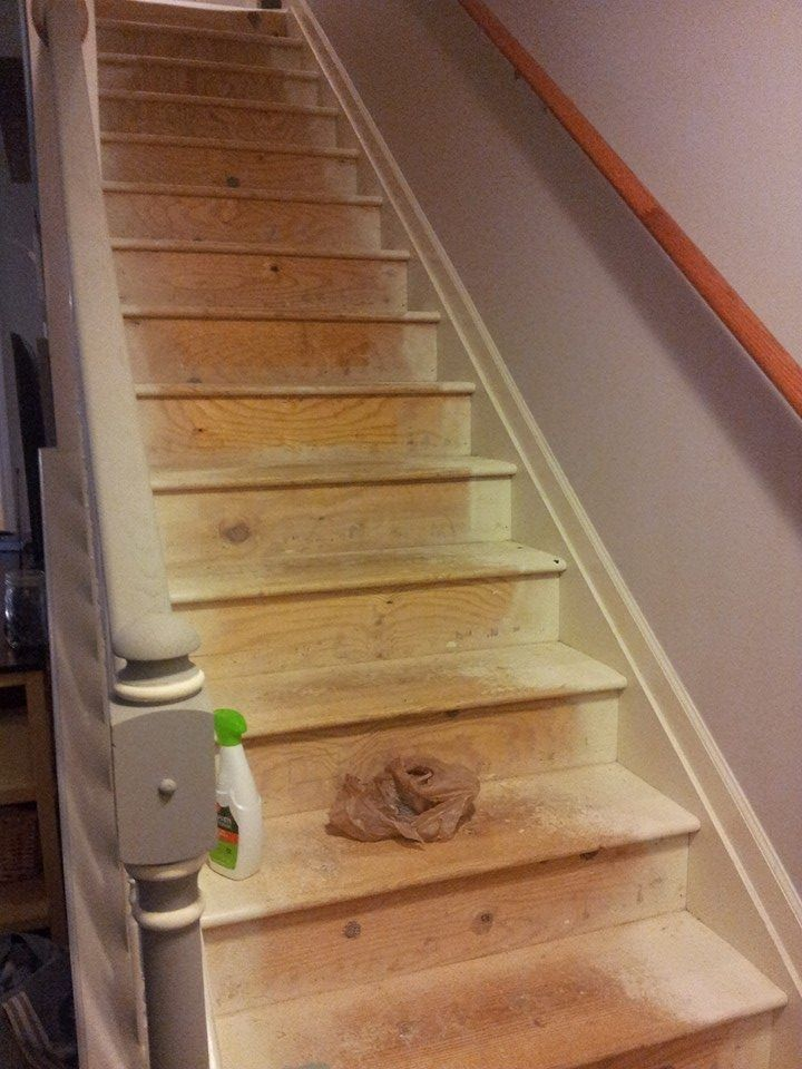Best Painted Stairs For Under 50 Painted Stairs Hallway 400 x 300
