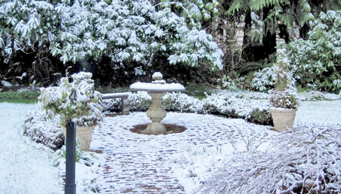 Winter Garden Ideas Design Your Life