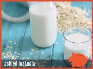 Il latte vegetale rappresenta un'alternativa gustosa ma soprattutto più sostenibile rispetto al latte vaccino (quello classico di mucca del supermercato, che sembrerebbe non faccia nemmeno così bene alle ossa come dicono). E che dire del risparmio? Un bel vantaggio, come ci spiega la nostra...