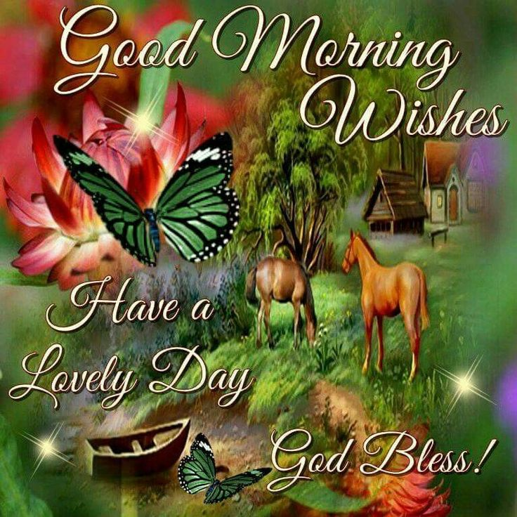 1422 best gmorning greetings images on pinterest mornings good morning wishes have a lovely day god bless morning good morning morning quotes good morning quotes good morning greetings m4hsunfo