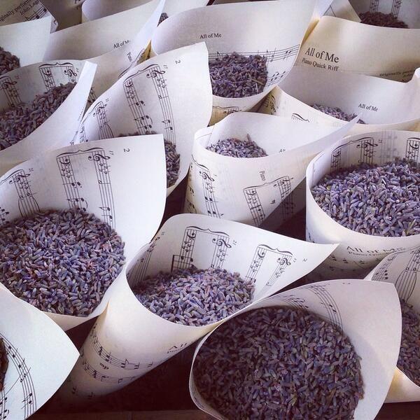 Lavendel om mee te strooien in puntzakjes van bladmuziek! #bijzonderhuwelijk
