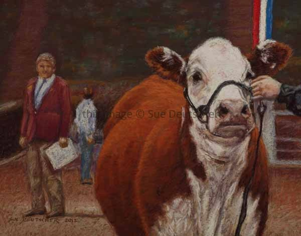 12 best art cattle the polled hereford images on